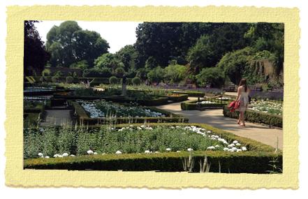גנים בלונדון צ'לסי - קנזינגטון - Holland Park