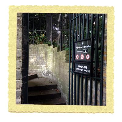 גן בלונדון המפסטד הית'