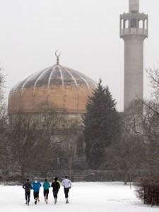 רג'נט פארק בשלג
